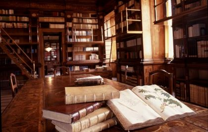 biblioteca p.