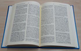dizionario aperto p